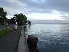 Evening Runner (mikecogh) Tags: suva fiji foreshore sea calm dusk running exercise fitness edge