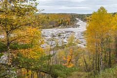 Fall Overlook (Greg Riekens) Tags: autumn usa landscape fallcolors jaycookestatepark river nikond500 scenic stlouisriver statepark trees midwest fall fallleaves minnesota