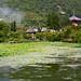 Daikaku-ji and Hirosawa Pond during Lotus Season