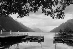 Brienz (vladixp) Tags: fp4 fp4plus fp480 d76 14min 20c 12 praktica mtl5 flektogon k2 pf7250u 3600dpi 35mm yellowfilter filmscan 35mmfilm film bw bwfilm filmphotography negative scanned svizzera schweiz switzerland suisse brienz brienzsee brienzersee
