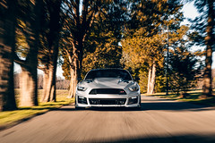 Ford Mustang 5.0 1 (Arlen Liverman) Tags: exotic maryland automotivephotographer automotivephotography aml amlphotographscom car vehicle sports ford mustang 50 american muscle