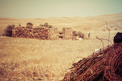 unfinished fence (cheezepleaze) Tags: unfenced unfinished ruin fencing dry yesteryear summer rust fence failingtofinallyfinishingthefixingthefenceruninedfred farm barbedwire oldstonecottage