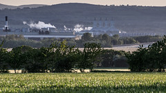 Connah's Quay Power Station and Deeside (Ady Negrean) Tags: north wales northwales connahsquay ceiconnah deeside cymru uk unitedkingdom powerstation summer cornfield cheshire dee riverdee steam