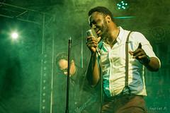 Bluesy Pix 18_01_2020 (10) (pSauriat) Tags: concert live show band scène festival musique music canon 6d artiste musicien