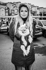 Alemany2018Dec 5.jpg (Dan Ryan's Works) Tags: alemanyboulevard alemanyboulevardsf alemanyfleamarket sanfrancisco sanfranciscoca sanfranciscocalifornia sanfranciscostreetphotography sanfranciscostreetphotos blackandwhite blackandwhitephotography dogphotography dogphotos dogs monochrome monochromephotography streetlife streetphotography streetphotos
