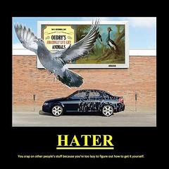 Haters will hate. #vegas #chicago #newyork #losangeles #miami #sanfrancisco #houston #denver #philadelphia #washingtondc #seattle #minneapolis #stlouis #pdx #phoenix #sandiego #cleveland #detroit #toronto #indianapolis #sacramento #reno #saltlakecity #orl (Go vegas go) Tags: ifttt instagram vegas motivation sin city mobile money success entreprenuer