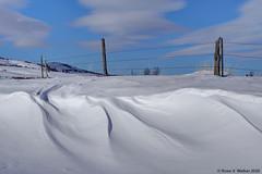 Roadside Drifts (walkerross42) Tags: snow drift snowdrift fence barbedwire winter wind nounan idaho bearlakecounty curve mountain