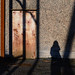 Shipyard shadow