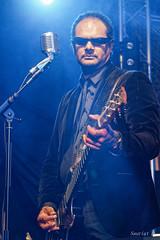 Bluesy Pix 18_01_2020 (9) (pSauriat) Tags: concert live show band scène festival musique music canon 6d artiste musicien