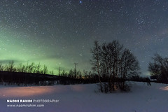 Aurora borealis over Finnish Lapland - Jan 1, 2020 (Naomi Rahim (thanks for 5 million visits)) Tags: aurora finland enontekiö stars milkyway astrophotography nikon nikond7200 night wanderlust travel travelphotography green northernlights longexposure landscape nature wilderness 1116mm