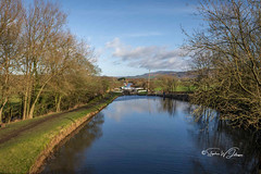 SJ2_0782  - Bottom Lock #36 at Bank Newton (SWJuk) Tags: swjuk uk unitedkingdom gb britain england yorkshire northyorkshire banknewton eastmarton gargrave canal leedsliverpoolcanal lock bottomlock bluesky clouds 2020 jan2020 winter water waterscape flat calm reflections nikon d7200 nikond7200 nikkor1755mmf28 rawnef lightroomclassiccc