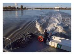 On the Schelde Waterbus (2) (AurelioZen) Tags: europe belgium vlaanderen schelde industry antwerpen waterbus voyagers