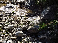 A lovely sight! (Ia Löfquist) Tags: crete kreta winter vinter stream bäck water vatten glitter