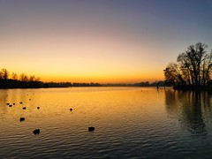 The golden lake (andtor) Tags: zeuthenersee zeuthen germany brandenburg sunrise sonnenaufgang winter frosty