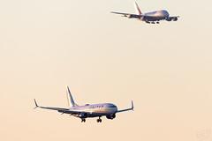 N73291 United 737-800 IAH 2020-01-19 (GFB Aviation Photography) Tags: n73291 united 737 737800 iah kiah