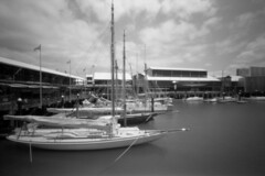 Pinhole Marina  (MF Ultrafine Xtreme 100) (Harald Philipp) Tags: ondu pinhole marina auckland dock sailboat museum 6x9 ultrafine 120 mediumformat iso100 holiday vacation tourism exotic destination travel adventure wanderlust island beautiful romantic atmosphere serenity dreamy soft haraldphilipp outdoors light sky ocean southpacific water film grain analog filmphotography newzealand