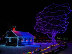 IMG_20200101_192912 (clefq) Tags: smpoole google pixel 2 htc mobile cell phone winter upper canada village light night christmas lights sight dark colors