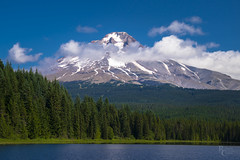 Trillium Blue and Green (RobertCross1 (off and on)) Tags: a7rii alpha cascaderange cascades clackamas e55210mmf4563oss emount ilce7rm2 mounthood mounthoodnationalforest mthood or oregon pacificnorthwest sony trilliumlake wasco bluesky clouds forest fullframe glacier lake landscape mirrorless mountains ski skiing snow trees water hoodriver timberline