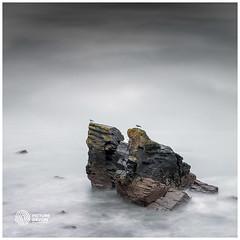 Meadfoot Rock (picturedevon.co.uk) Tags: meadfoot beach torquay torbay devon seascape minimal fine art sea sky clouds coast winter rock tide water sonya7rii square