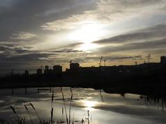 IMG_7871 (jesust793) Tags: amanecer agua estanque pond sunrise