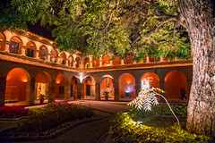 Como anillos de oro vacío (.KiLTЯo.) Tags: kiltro peru cusco belmondhotelmonasterio hotel night tree light nightlight color colour city town plant neon