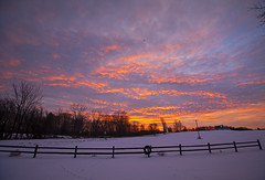 Happy Friday! (Matt Champlin) Tags: weekend friday sunrise beautiful nature sky winter snow cold snowy january life landscape peaceful quiet calm calming morning home skaneateles canon 2020