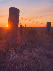 End of the Day  HFF (wdterp) Tags: sun sunset fence barbedwire fencefriday hff