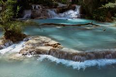 Laos – Kuang Si Falls (Thomas Mulchi) Tags: kuangsifalls laos luangprabang kuangxi tatkuangsiwaterfalls waterfall waterfalls 2019 water forest tree trees pool waterpool river hill banmuangkhay luangprabangprovince bej happyplanet asiafavorites