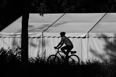 one direction (Wackelaugen) Tags: bicykle bike canon eos 760d photo photography stephan wackelaugen black white bw blackwhite blackandwhite mono noiretblanc schwarz weis schwarzweis