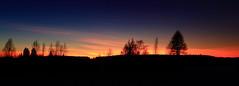 Sunset_2020_01_24_0004 (FarmerJohnn) Tags: sunset auringonlasku punainen taivas red sky lateafternoon iltataivas taivaanranta pilvet clouds colors colorfull värikäs talvi winter january tammikuu suomi finland laukaa valkola anttospohja canoneos5dmarkiii canonef1635l28iiusm canon 5d markiii juhanianttonen