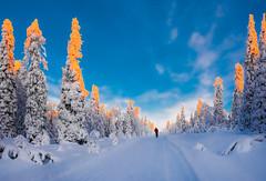Lovely Lapland (ikkasj) Tags: pallasyllästunturinationalpark nature innature finland lapland muonio sammaltunturi colorful sunset blue crosscountryskiing skiiing evening snow winter