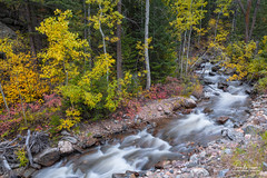 Left Hand Tranquility (Striking Photography by Bo Insogna) Tags: tranquility colorado seasons peaceful calm rockymountains streams creeks lefthandcanyon bouldercounty waterflowing autumnseason autumnviews lefthandcreek travel art yellow forest golden scenic prints wilderness reds jamesinsogna coloradofallfoliage landscapes coloradolandscapes sonya7rll