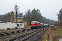 233 232 I Börnecke (Bahn Sascha) Tags: eisenbahn ludmilla harz br232 zug train db cargo