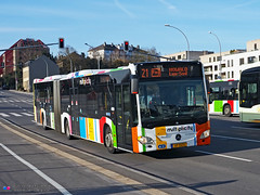 Mercedes Citaro C2 G - Multiplicity 80 (Pi Eye) Tags: mercedes o530 citaro citarog articulé gelenk c2 luxembourg avl vdl multiplicity rtgr letzebuerg bus