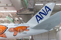ANA_A380_JA383A_20200124_XFW-06 (Dirk Grothe | Aviation Photography) Tags: ana all nippon airways a380 ja383 flying honu la xfw airbus paintshop rollout