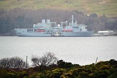SD Angeline alongside RFA Fort Victoria (Zak355) Tags: rothesay isleofbute bute scotland scottish naval rfafortvictoria navy ship shipping boat vessel royalnavy royalfleetauxiliary lochstriven riverclyde sdangeline