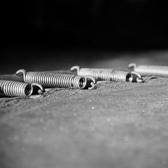 spring / Feder (fotio14) Tags: feder trampolin sw