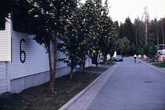 Home Street (Petri Karvonen) Tags: analog film photography fuji fujichrome astia astia100 positive reversal fujifilm street evening finland suomi kuopio home summer olympus om2n zuiko 50mm 5014 f14 slide filmikuva filmikuvaus diafilmi e6 neigborhood neighbourhood analogue