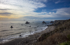 Jenner, CA (Crystal Mandolin) Tags: gull sky blue sunset ocean jenner california shore cliffs rocks surf clouds beauty nature