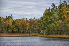 Autumn by the lake. (Bessula) Tags: bessula scenery landscape autumn trees water sweden lake sky coth5