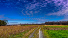 Field landscape Jelnia (Andrzej Kocot) Tags: andrzejkocot art adventure creative clouds colors countryside sky surreallandscape surreal sunlight skyline olympus omd outdoor poland polska forest field photography pov fineart