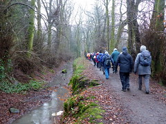 Photo of Ramblers by the Mill Lade, Colzium, Kilsyth