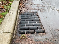 Drain and Flooding (Seattle Department of Transportation) Tags: jeanneclark sdot seattledepartmentoftransportation drainage drain flood flooding