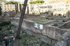 Largo Argentina - DSC07885_ep (Eric.Parker) Tags: rome roma italy 2014 europe cat argentina