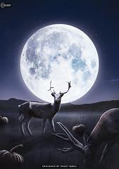 Deer Beyond The Big Moon - I Wasif (iwasif000) Tags: iwasif wasif wasef wasifiqbal photos digitalldesign manipulation seer deer pumpkin moon night sky stars smoke graphic design how stock grass
