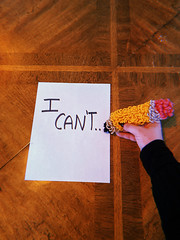 I Can't (H o l l y.) Tags: linds plant nature retro indie vintage textile fine art yarn rug installation weird pencil cant writing note funny