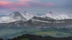 Eiger, Mönch & Jungfrau (Role Bigler) Tags: berge berneralpen bernesealps canon canoneos5dsr ef4070200isusml eiger eigermönchundjungfrau emmental jungfrau l panorama sonnenuntergang alpen alps eis greenhills ice mountains mönch nopeople peak schweiz snow suisse sunset swissalps switzerland viertausender