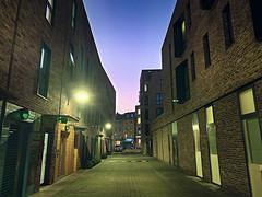 Tabernacle Gardens, E2 (sixthland) Tags: street london iphonexs shoreditch nightphotography tabernaclegardens camerap neuralcam flare luminar4