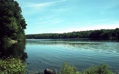 Wright Pond (matt carroll with a camera) Tags: wrightpond 35mm e200 crossprocessed expiredfilm pond