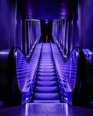 Follow the light (Mads92i) Tags: nikon city night cityoftnight paris parisdenuit parisbynight parislanuit architecture amazingshoot light bright neon blue escalator ladéfense sigma sigmaart sigma35mm sigmafrance nikonfr